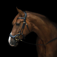 Уздечка Bristol от Utzon Equestrian